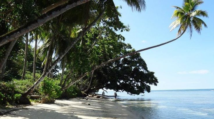 Vanimo Surf Lodge Gallery | Vanimo Surf Lodge  #surfing Papua New Guinea