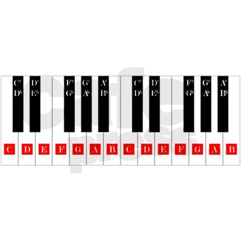 Piano Keys Chart Wall Decal by PianoBlog