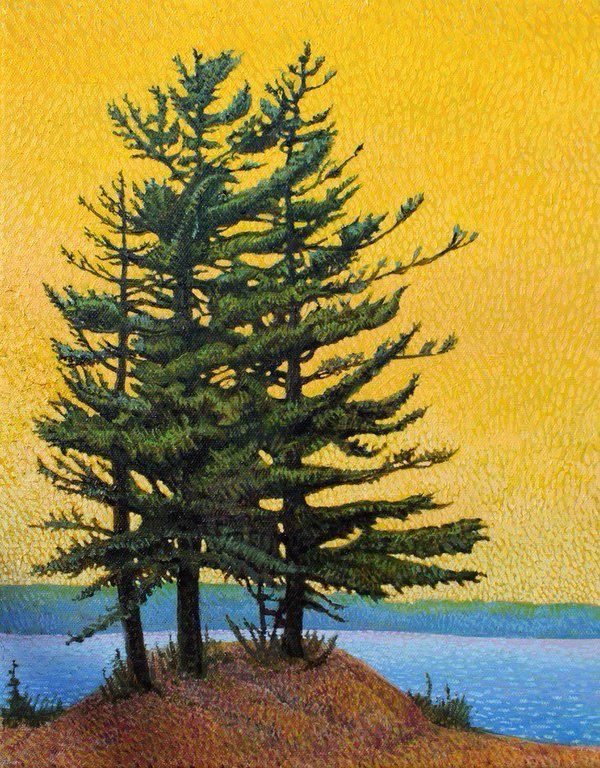 "John Kinsella on Twitter: ""Big Pines, Algonquin 2014 Oil 14 x 11 #Art #ArtLovers @cynthia_hayes @algonquin_lakes #algonquinpark #painting #oilpainting @PaintingSkills https://t.co/kxc6v7MyRH"""