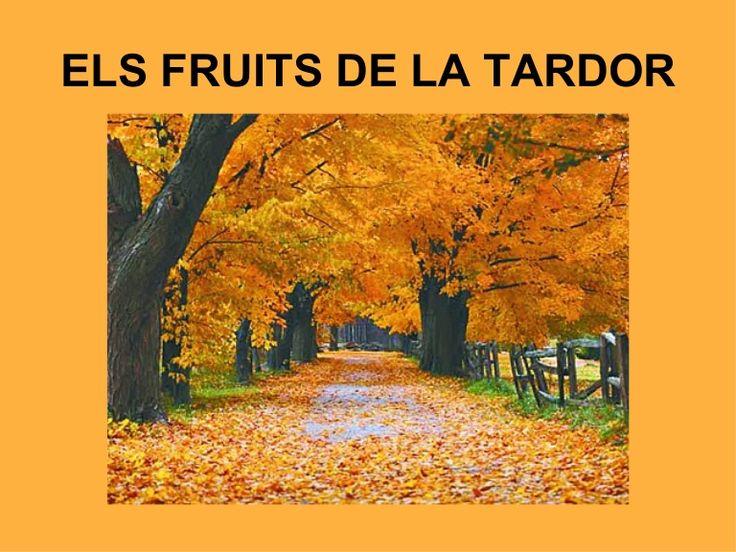 ELS FRUITS DE LA TARDOR
