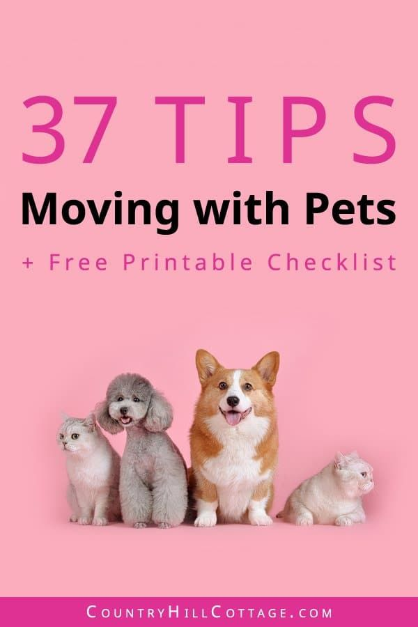 What To Do With Pets On Moving Day Tips Free Printable Checklist For Moving With Pets Pets Pet Hacks Cat Supplies