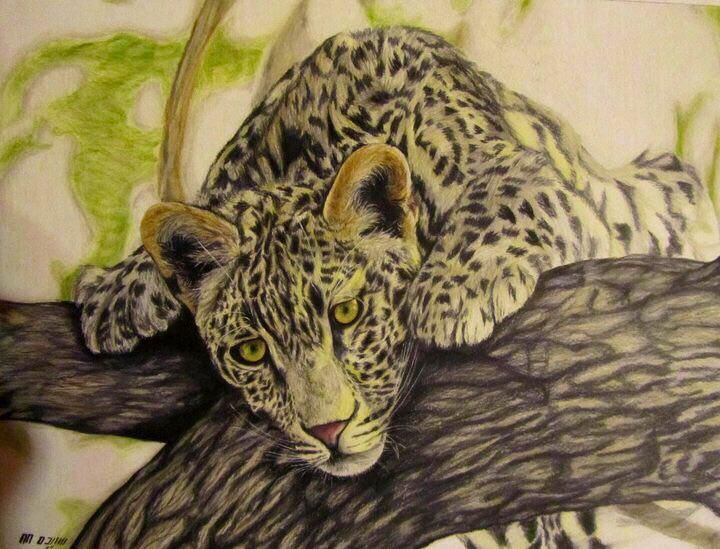 my painting by color pencil