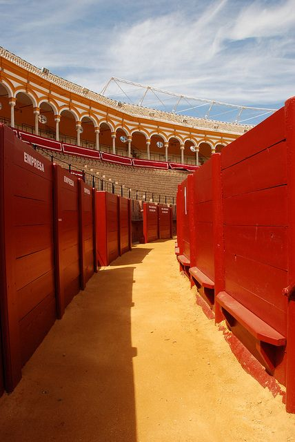 Plaza de toros de la Maestranza Sevilla España.                                                                     Give the animal the same options.