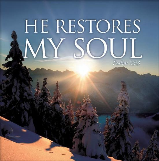 Psalms Bible Savior: 52 Best Images About Psalm 23 On Pinterest