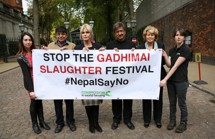 Speakers and Compassion staff get ready to call on the Nepalese government to stop funding this horrific cruelty