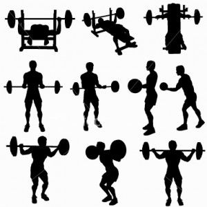 Weight Lifting Workout Routines