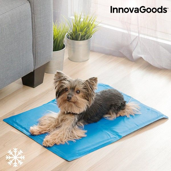 Innovagoods Refreshing Pet Mat 40 X 50 Cm Innovagoods Refreshing Pet Mat 40 X 50 Cm Description Surpri Pets Pet Cooling Mat Pet Mat