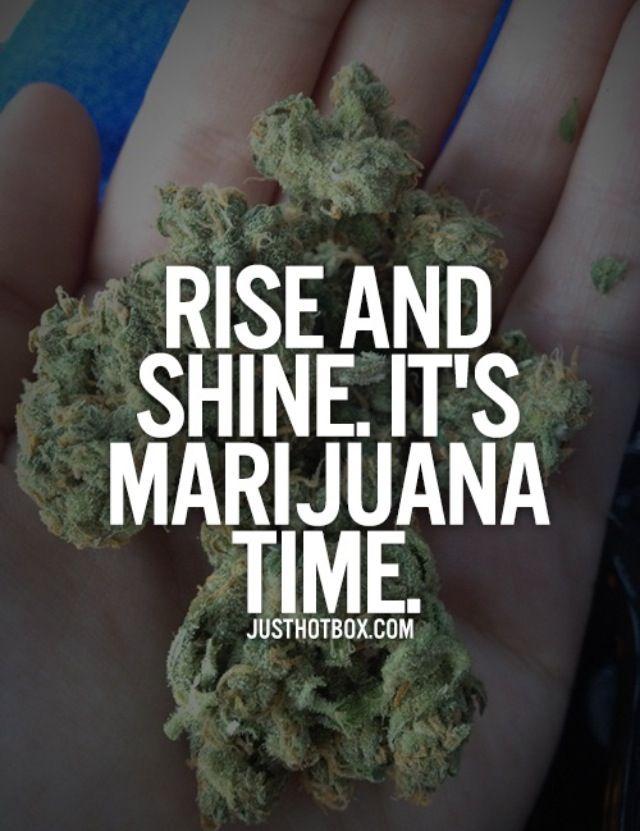 Kush Get High Marijuana Legalize Peace My Favorite