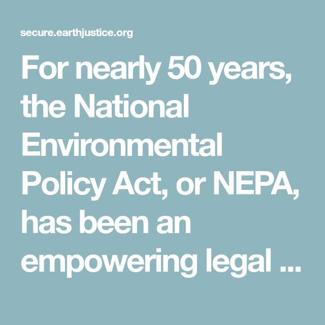 For nearly 50 years, the National Environmental Policy Act, or NEPA, has been an empowering legal tool that allows communities to defend themselves and their environments from dangerous, rushed or poorly planned federal and industry projects. The law ensures that your community has a say when special interests want to build a toxic waste incinerator in your neighborhood or a dangerous pipeline next to your child's school.  Now, the United States Forest Service, under pressure from the timber…