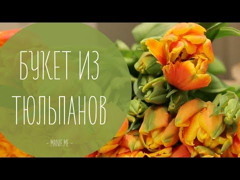 Букет из тюльпанов (покупка и уход)   флористика рукавички - YouTube