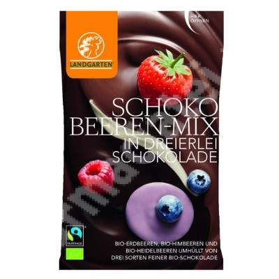 "Fructe de padure in mix de ciocolata Bio, 50 g, Landgarten<br /><span class=""small"">[9004998002085]</span>"