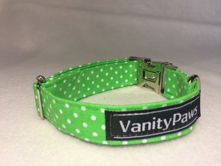 A personal favourite from my Etsy shop https://www.etsy.com/au/listing/277636572/lime-green-poka-dot-dog-collar