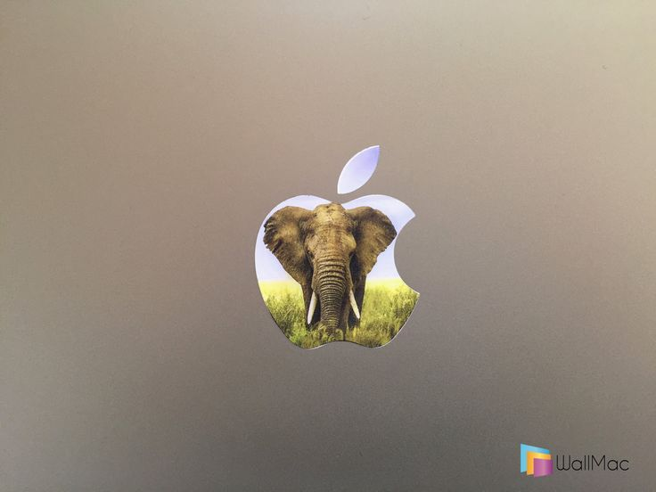 Animal Glowing Backlit Apple Logo for MacBooks Lion Elephant Leopard 2 Decals per Order by WallMac on Etsy