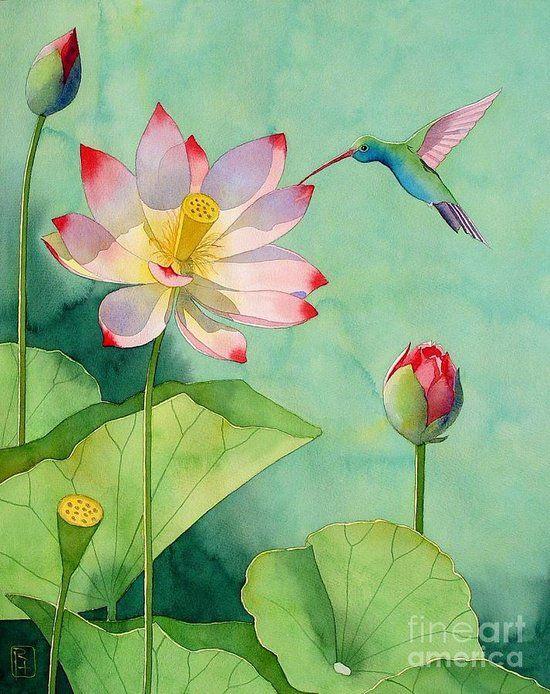 Lotus & Hummingbird Painting -by Robert Hooper
