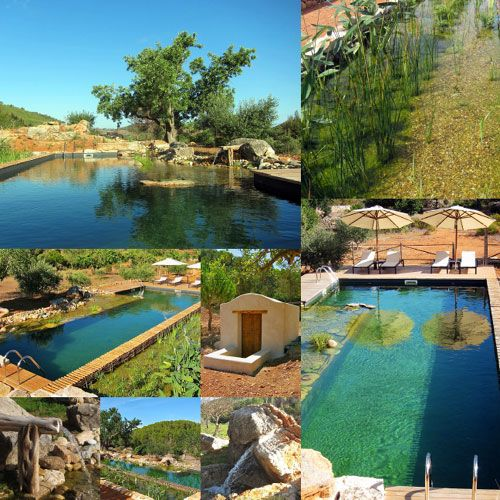 find this pin and more on piscinas ecologicas by