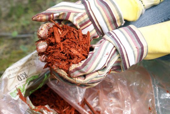 """""""Free Wood Mulch!"""" Rather than buying mulch in bags, contact local tree-trimming companies to inquire whether free mulch is an option.From: MOTHER EARTH NEWS"""
