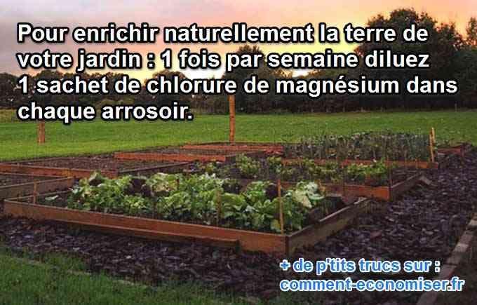 Quel engrais naturel et efficace ferait du bien à votre jardin ?  La réponse va peut-être vous surprendre : le chlorure de magnésium.  Découvrez l'astuce ici : http://www.comment-economiser.fr/engrais-chlorure-potager.html
