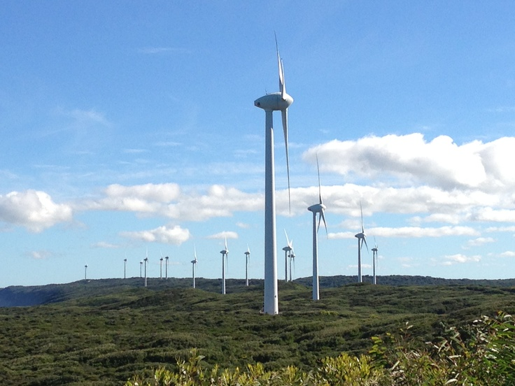 The Albany Wind Farm with the new turbines... What a sight!