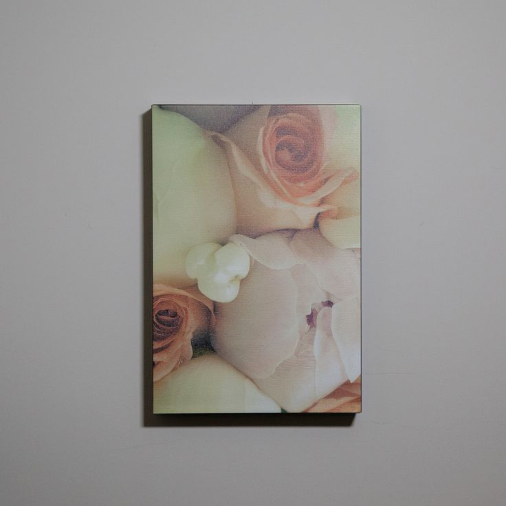 This large rose photo canvas is for sale for $100. If you'd like this or something like to hang on your wall send me a message. :) http://sophialemon.com/contact