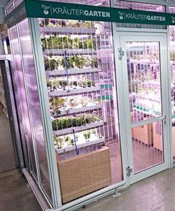 Di supermarket ini kamu bisa mendapatkan sayuran segar hidroponik http://www.perutgendut.com/read/saat-ini-kebun-sayur-pun-ada-di-supermarket-mau-beli/1170 #Artikel #Food #Health