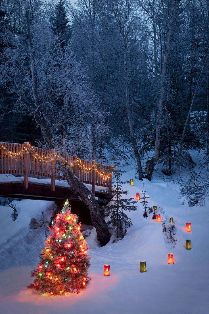 Visit a tree-lighting ceremony. Country living .