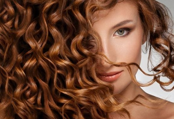 Beauté : L'huile de jojoba pour nourrir peau et cheveux   Mieux Vivre