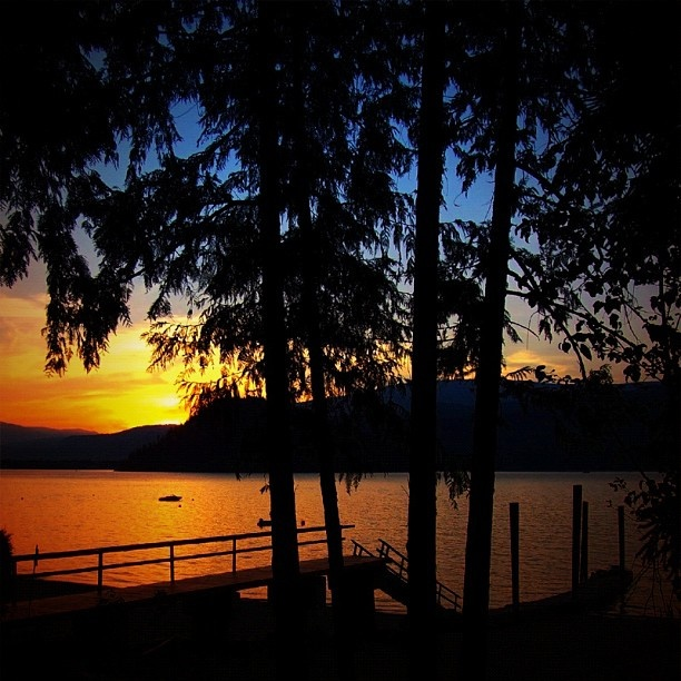 Shuswap Lake where I grew up and live again now. One of my favourites places in the world to be back to.