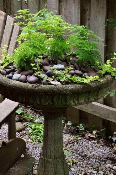 Birdbath container great idea-- ferns and small stones