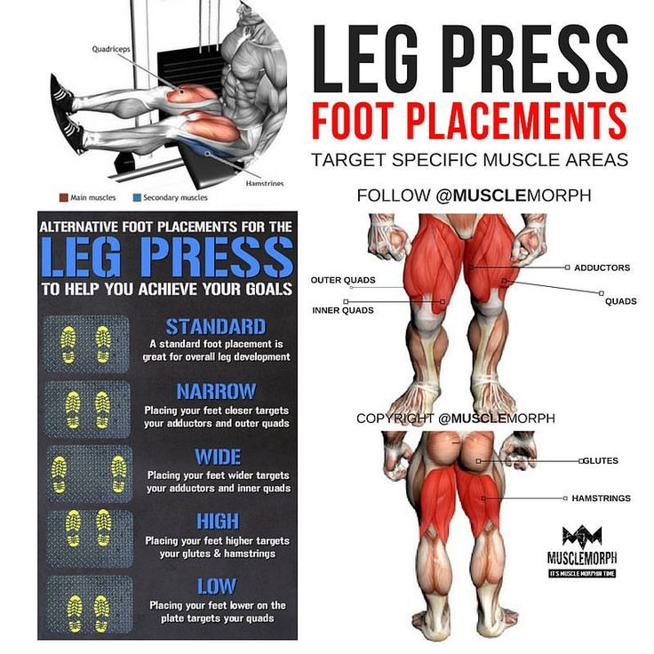 Foot placements for Leg Press to hit different muscle areas 👆🏻LIKE & SAVE it if you found this useful and FOLLOW @musclemorph_ for more exercise & nutrition tips 💪🏻TAG A GYM BUDDY . ✳Enhance your progress with @musclemorph_ supps ➡MuscleMorphSupps.com #MuscleMorph link in bio via ✨ @padgram ✨(http://dl.padgram.com)