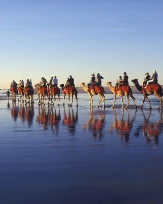 "See the ""Best Sunsets: Cable Beach, Broome, Western Australia"" in our 50 Best Beach Honeymoons gallery"
