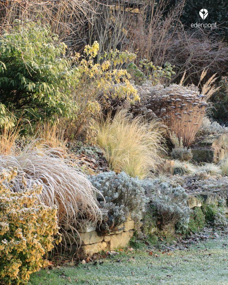 Stonegarden in wintertime #MyEdenGarden