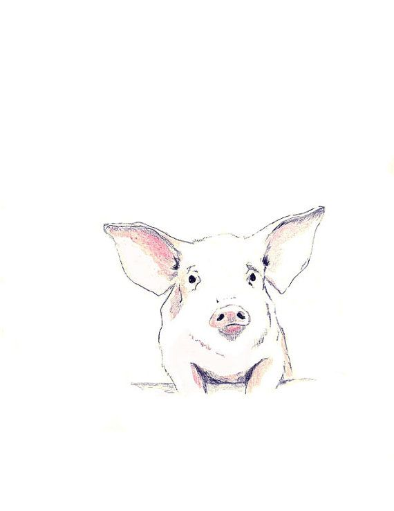 Pig Drawing   Some Pig by corelladesign on Etsy, $20.00