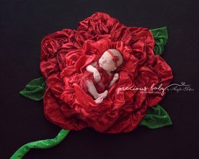 Gorgeous photo of newborn baby girl sleeping in a red rose made of fabric. Beautiful breathtaking amazing unique creative petals floor art baby scenes painting with fabric Baby ImaginArt by Angela Forker Precious Baby Photography New Haven Fort Wayne Indi