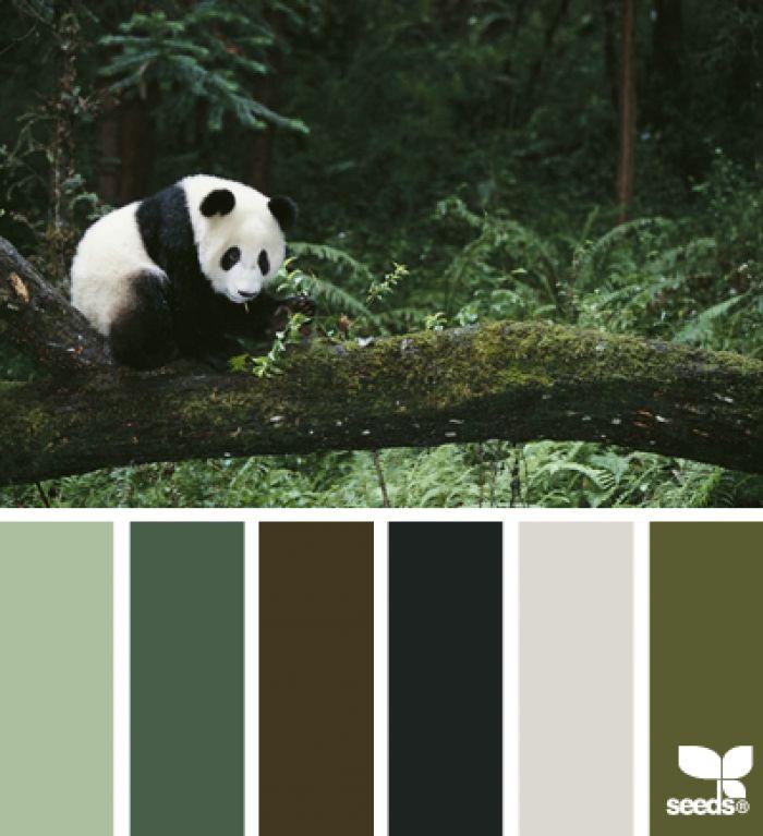 Mooie kleuren zwart wit grijs groen in combinatie met houten meubels home sweet home for Gang grijs en wit