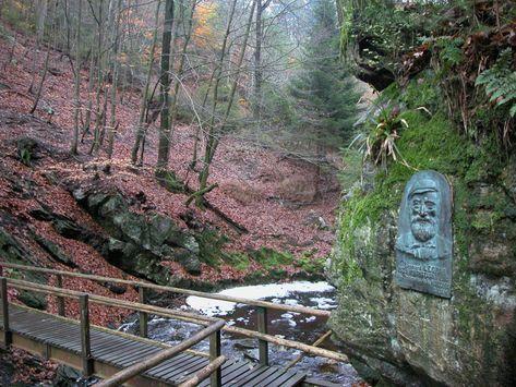 """Van Belleheid tot de brug van Centenaire; een ontdekking van één van de mooiste rivieren, ontsprongen in het hart van het natuurpark """"Hautes-Fagnes"""" (de Hoge Venen)"""
