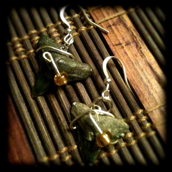 $10.00  Authentic fossilized bull shark teeth earrings accented with wire and beads. The teeth are from my dives in Venice, Fla.