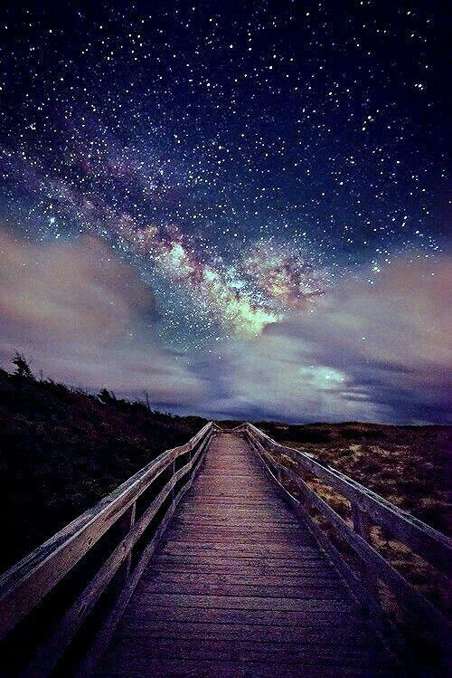 """Lily) """"My one-one-one date with the prince is Star Gazing."""" I smile"""