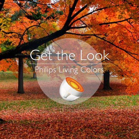 Get the look of #foliage changing in #autumn with Philips Living Colors http://www.livingcolors.philips.com/ #interiordesign #lighting #technique #colors #decor #PhilipsBrightIdeas