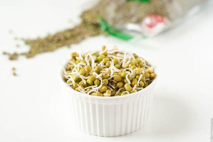 Πως φτιάχνουμε σπιτικές φύτρες φασολιών - how to make bean sprouts (in Greek) www.thefoodiecorner.gr