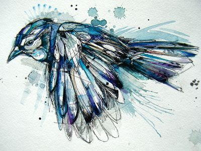 I really like this, or maybe an anatomical sketch of a bird... just a thought.