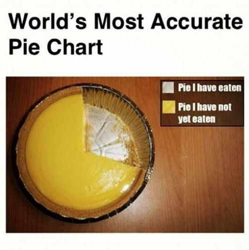 The world's most accurate pie chart for sure. Science has taken us to great heights