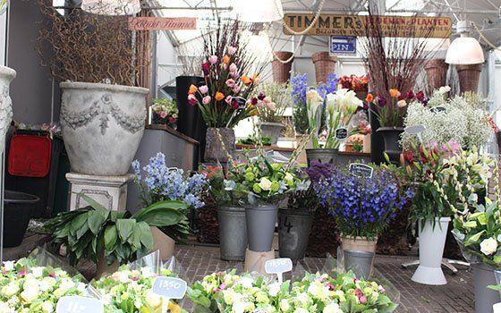 El mercado de flores de Ámsterdam - Visitar Ámsterdam - Holland.com
