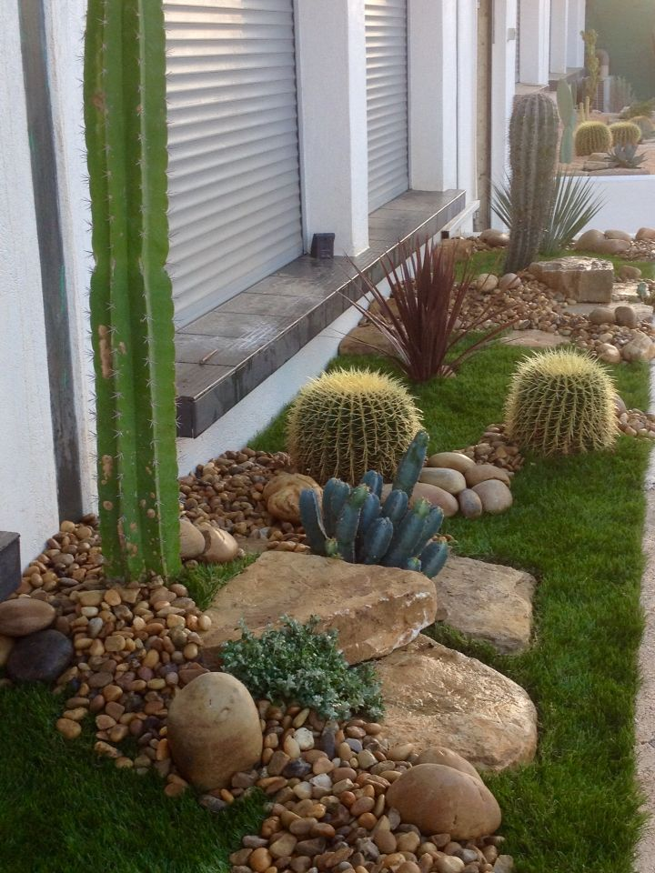 43 best pieri jardins creation images on pinterest marseille cactus and cactus plants. Black Bedroom Furniture Sets. Home Design Ideas