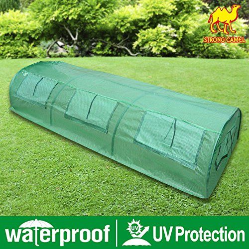 Special Offers - STRONG CAMEL Tunnel Green House 10X3X2 Outdoor Gardening Garden Greenhouse For Sale - In stock & Free Shipping. You can save more money! Check It (October 23 2016 at 03:02AM) >> http://growlightusa.net/strong-camel-tunnel-green-house-10x3x2-outdoor-gardening-garden-greenhouse-for-sale/