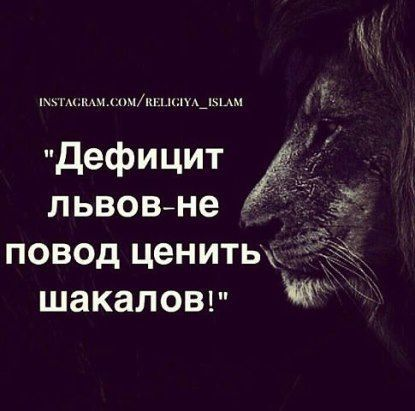 Ось ваші щотижневі рекомендації! • gusar_oa@ukr.net