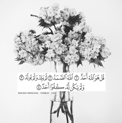 """""""Say (O Muhammad PBUH): He is Allaah, (the) One. Allah the self-sufficient Master, (whom all creatures need). He begets not, nor was he begotten. And there is none co-equal or comparable unto Him."""" [Quran Surah Al-Ikhlaas (112):1-4]"""