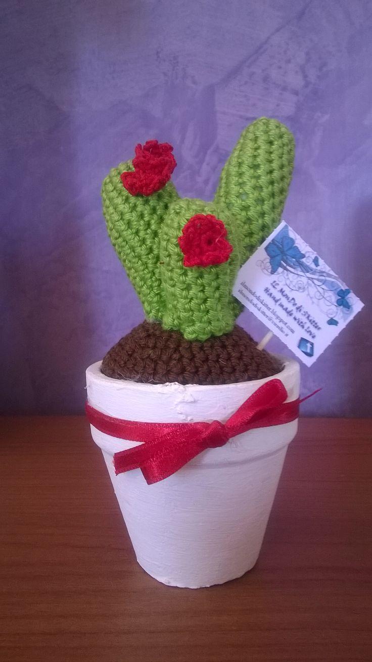 vaso di cactus con fiori rossi
