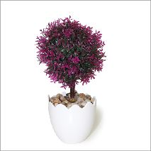 Arbolito de hoja lanceolada púrpura. Todos nuestros modelos aquí https://www.aw-regalos.com/ares