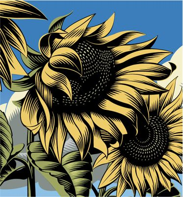 Sunflowers. Digital scratchboard illustration by ©Gary Alphonso. Represented by i2iart.com #i2iart