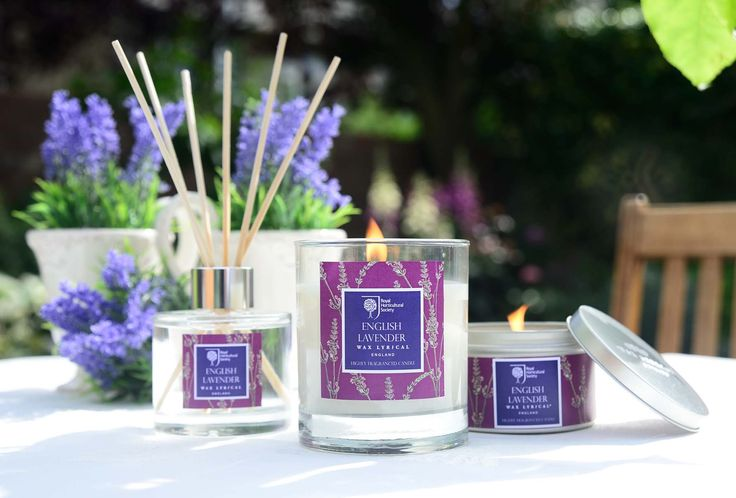 RHS English Lavender is a smell that is very distinctive, no matter if you're green fingered or not. Bring that smell into your home with our range of home fragrance #homefragrance #homedecor #english #lavender #rhs
